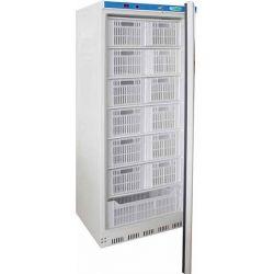 Armadio refrigerato statico eco line Forcar G-EF600CAS